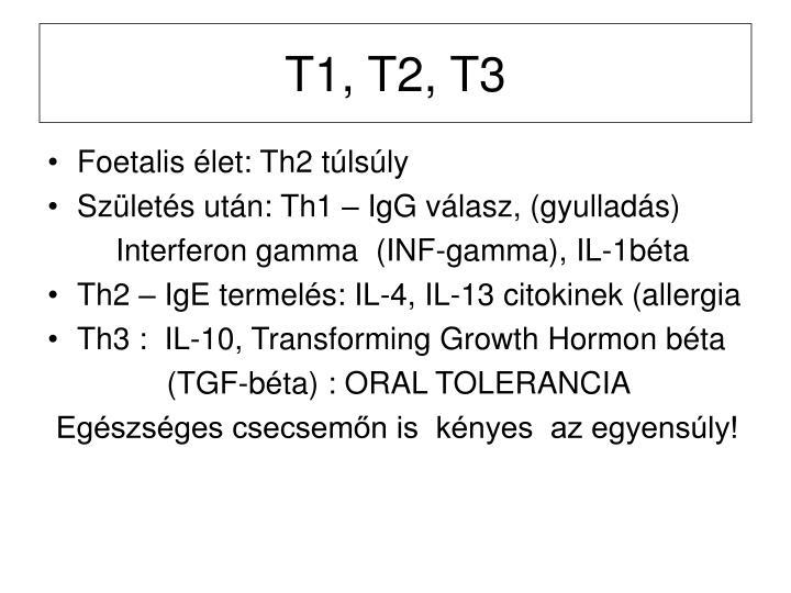 T1, T2, T3