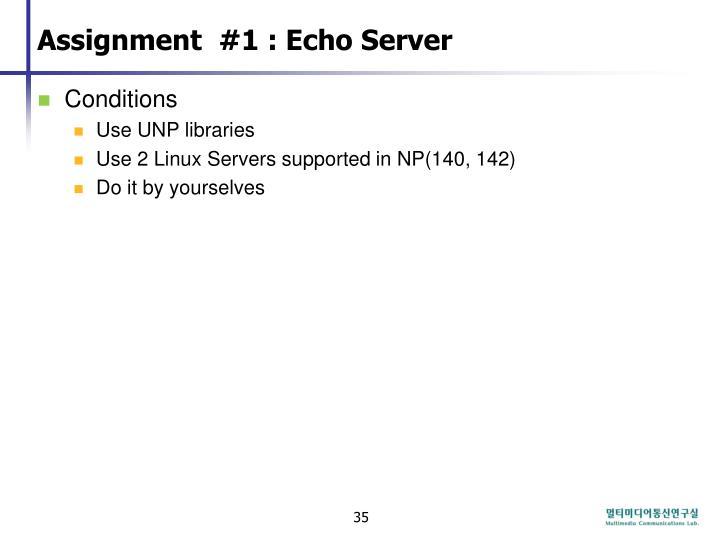 Assignment  #1 : Echo Server