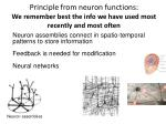 principle from neuron functions we remember best the info we have used most recently and most often