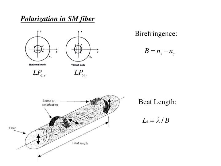 Polarization in SM fiber