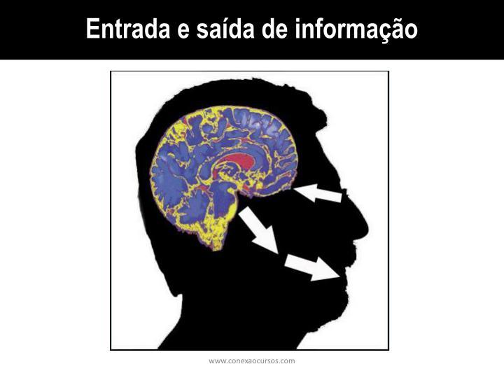 Entrada e saída de informação