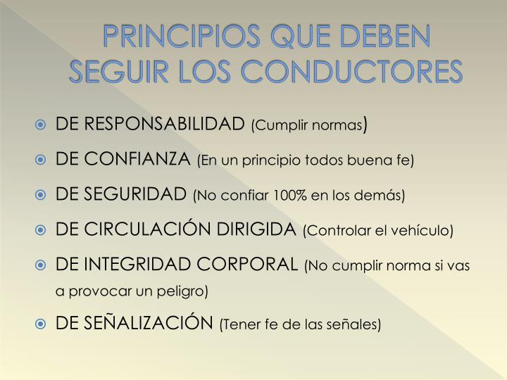 PRINCIPIOS QUE DEBEN SEGUIR LOS CONDUCTORES