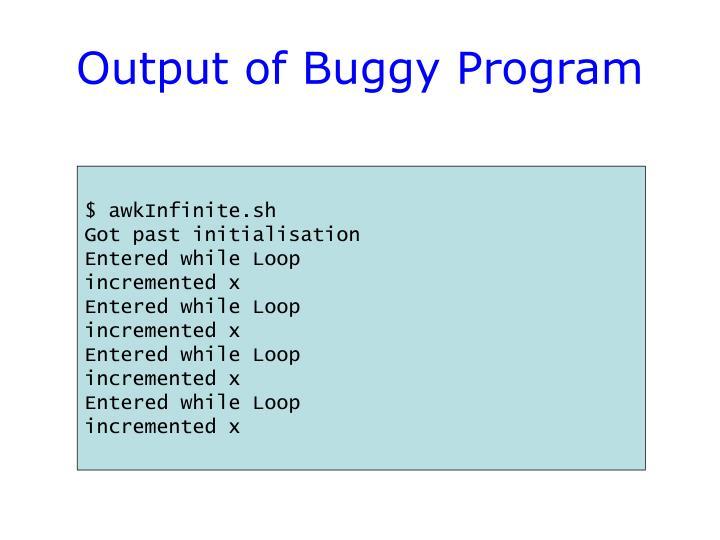 Output of Buggy Program