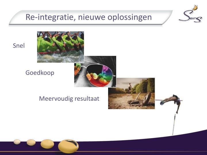 Re-integratie, nieuwe oplossingen