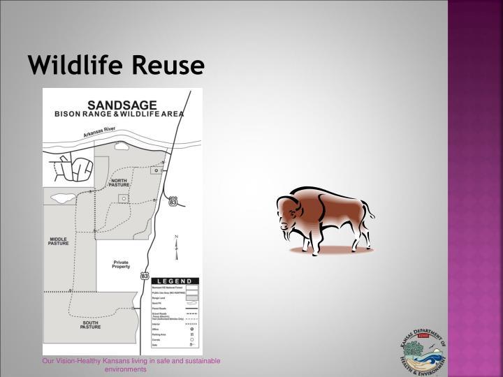 Wildlife Reuse