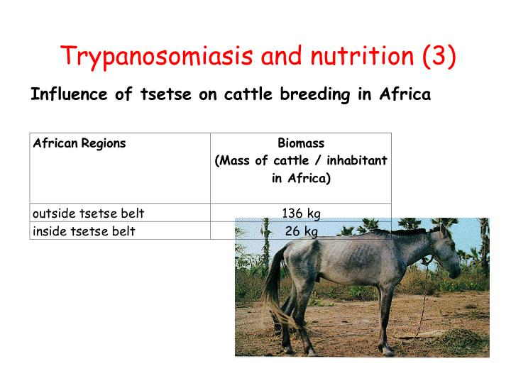 Trypanosomiasis and nutrition (3)