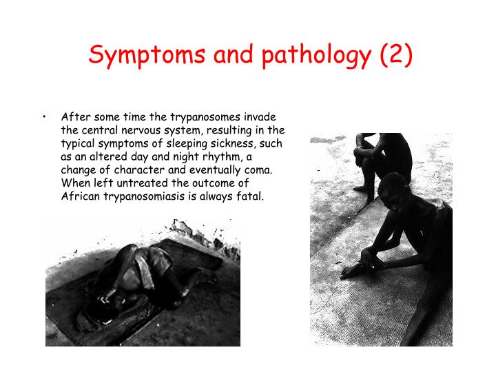 Symptoms and pathology (2)