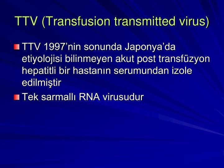 TTV (Transfusion transmitted virus)
