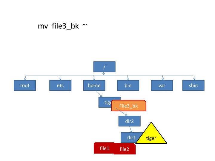 mv  file3_bk  ~