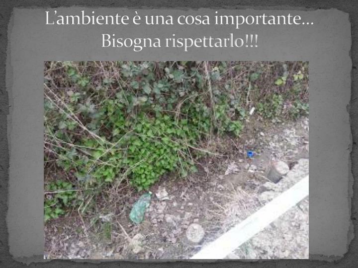 L'ambiente è una cosa importante... Bisogna rispettarlo!!!