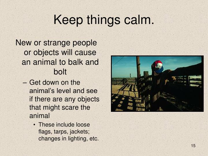 Keep things calm.