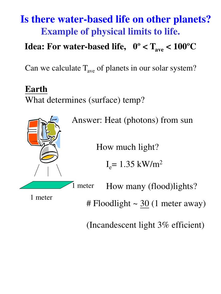 How much light?