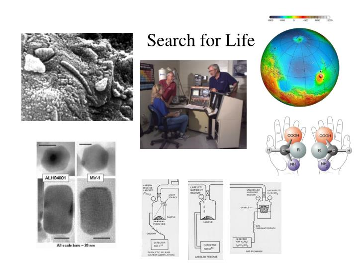 Search for Life
