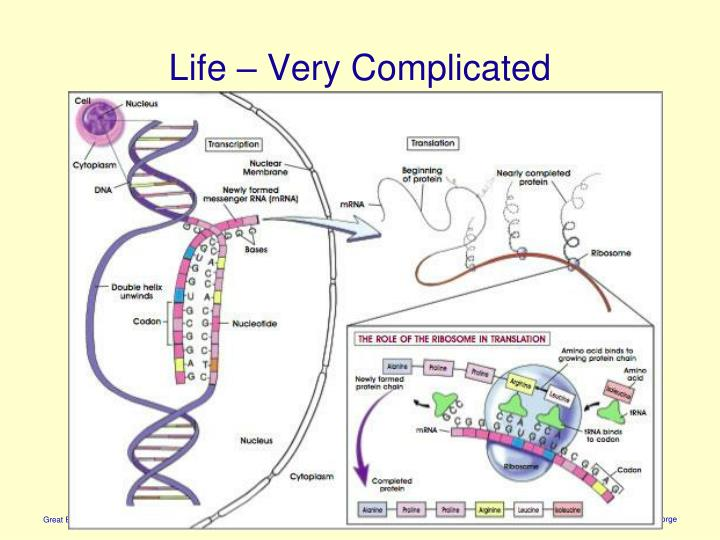 Life – Very Complicated
