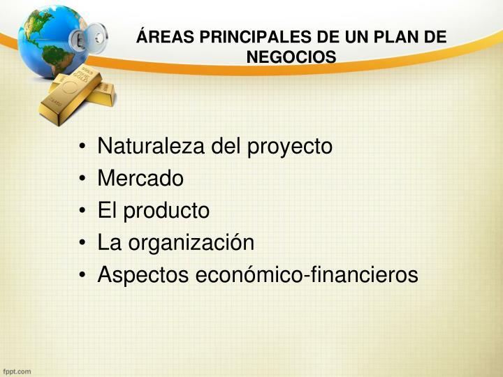 ÁREAS PRINCIPALES DE UN PLAN DE NEGOCIOS