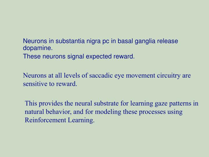 Neurons at all levels of saccadic eye movement circuitry are sensitive to reward.