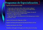 programas de especializaci n