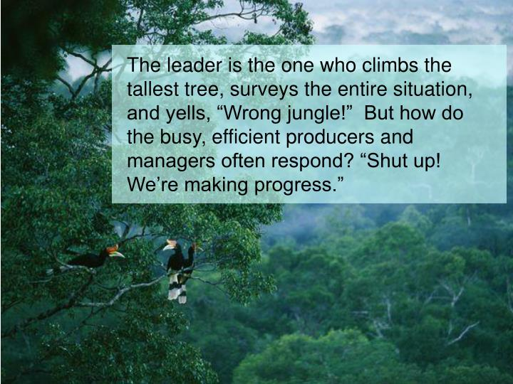 "The leader is the one who climbs the tallest tree, surveys the entire situation, and yells, ""Wrong jungle!""  But how do the busy, efficient producers and managers often respond? ""Shut up! We're making progress."""