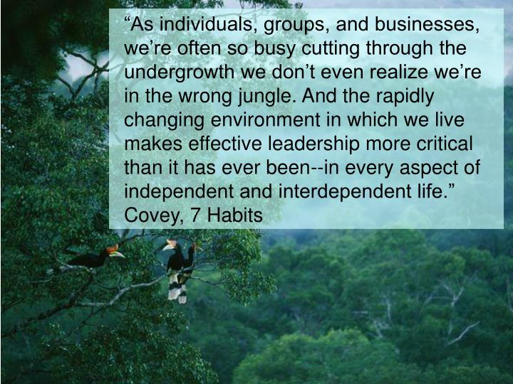 """As individuals, groups, and businesses, we're often so busy cutting through the undergrowth we don't even realize we're in the wrong jungle. And the rapidly changing environment in which we live makes effective leadership more critical than it has ever been--in every aspect of independent and interdependent life."" Covey, 7 Habits"