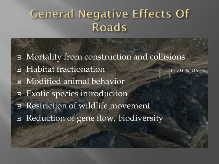 General negative effects of roads