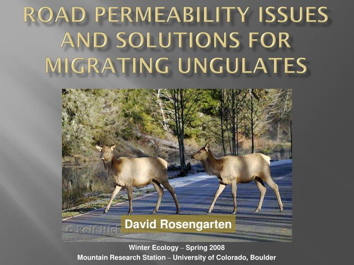 Road permeability issues and solutions for migrating ungulates