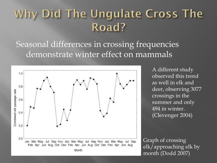 Why Did The Ungulate Cross The Road?