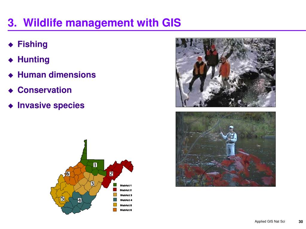 PPT - GIS in Wildlife Modeling Applications RESM 493q Wed Nov 11