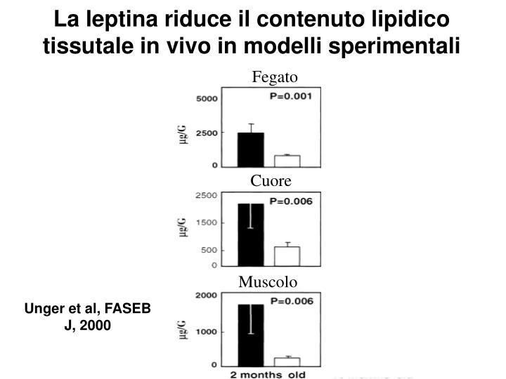 La leptina riduce il contenuto lipidico tissutale in vivo in modelli sperimentali