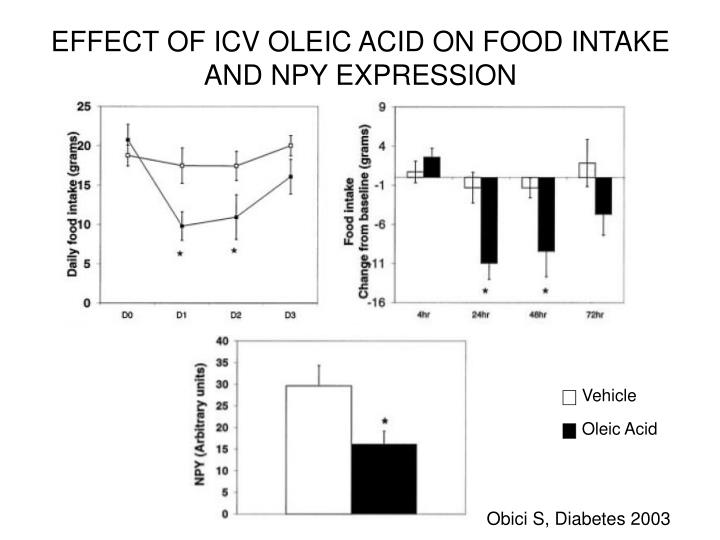 EFFECT OF ICV OLEIC ACID ON FOOD INTAKE AND NPY EXPRESSION