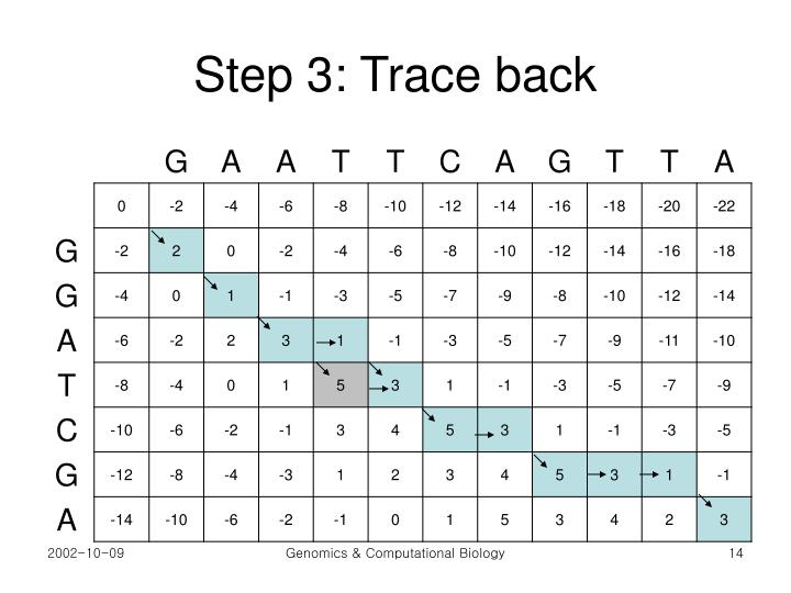 Step 3: Trace back