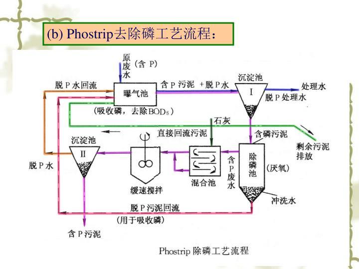 (b) Phostrip