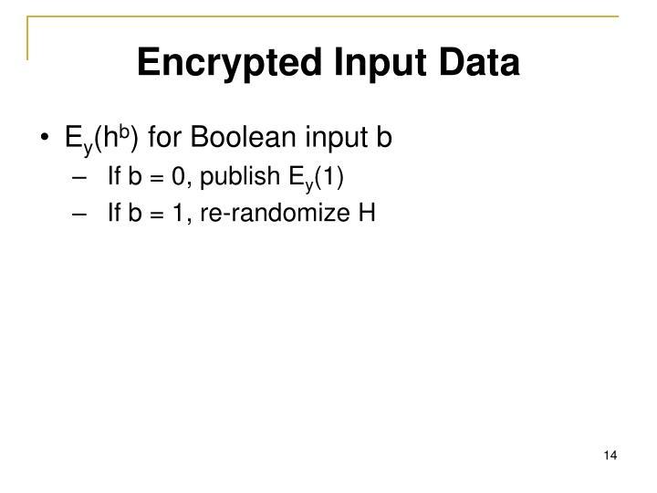 Encrypted Input Data