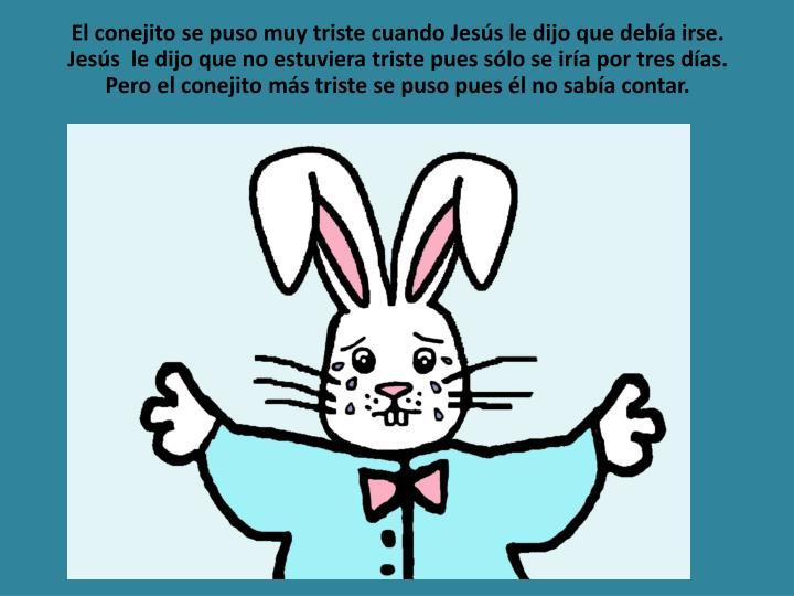 El conejito se puso muy triste cuando Jesús le dijo que debía irse. Jesús  le dijo que no estuvie...