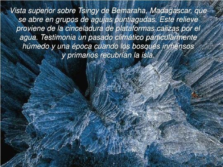 Vista superior sobre Tsingy de Bemaraha, Madagascar, que se abre en grupos de agujas puntiagudas. Este relieve proviene de la cinceladura de plataformas calizas por el agua. Testimonia un pasado climático particularmente húmedo y una época cuando los bosques inmensos