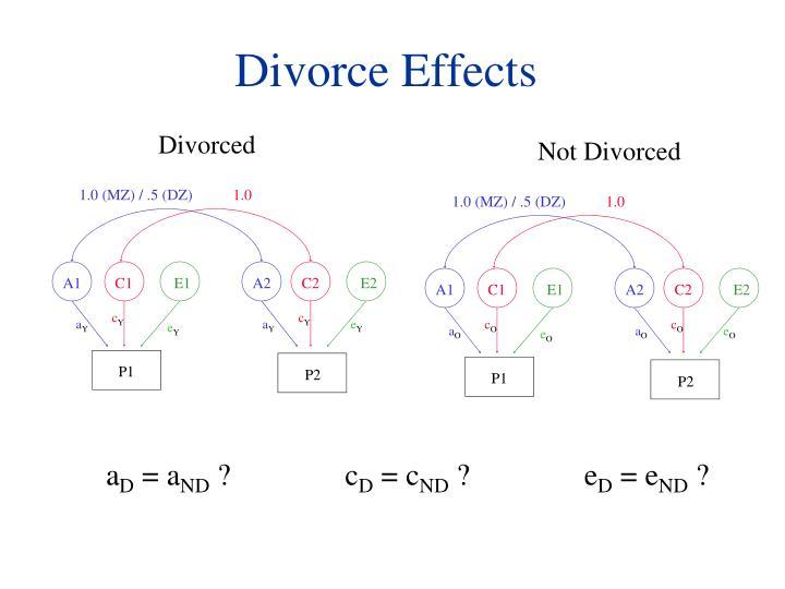 Divorce Effects
