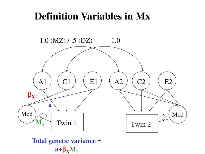Definition Variables in Mx
