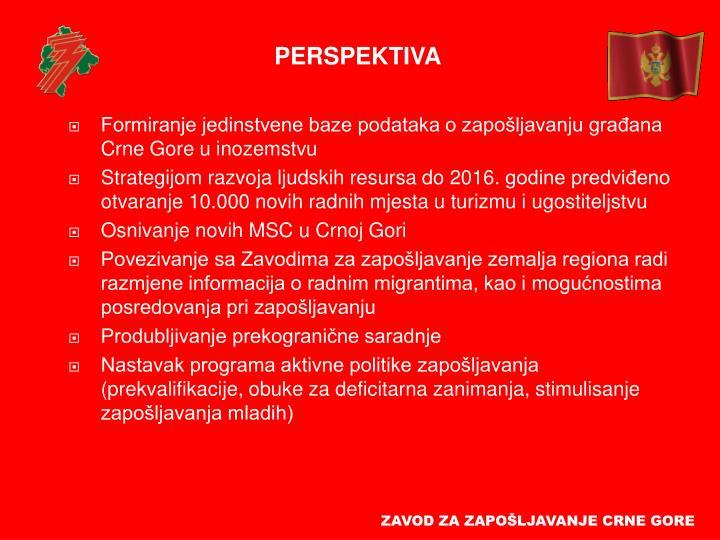 Formiranje jedinstvene baze podataka o zapošljavanju građana Crne Gore u inozemstvu