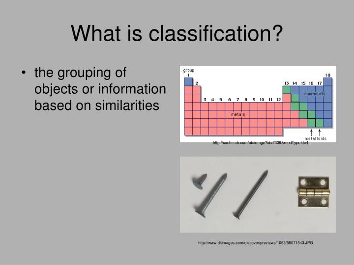 what is classification n.