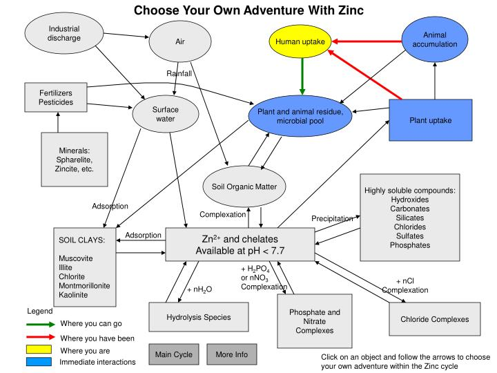 Choose Your Own Adventure With Zinc