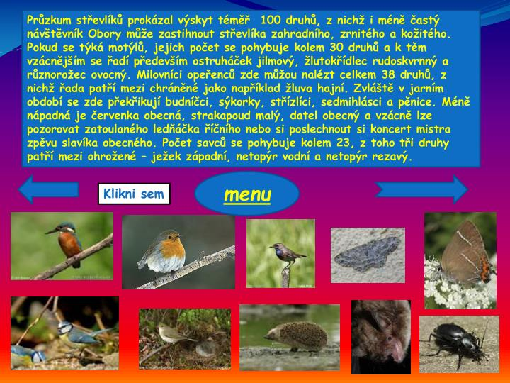 Průzkum střevlíků prokázal výskyt téměř  100 druhů, z nichž i méně častý návštěvník Obory může zastihnout střevlíka zahradního, zrnitého a kožitého. Pokud se týká motýlů, jejich počet se pohybuje kolem 30 druhů a k těm vzácnějším se řadí především ostruháček jilmový, žlutokřídlec