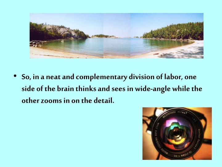 So, in a neat and complementary division of labor, one side of the brain thinks and sees in wide-angle while the other zooms in on the detail.