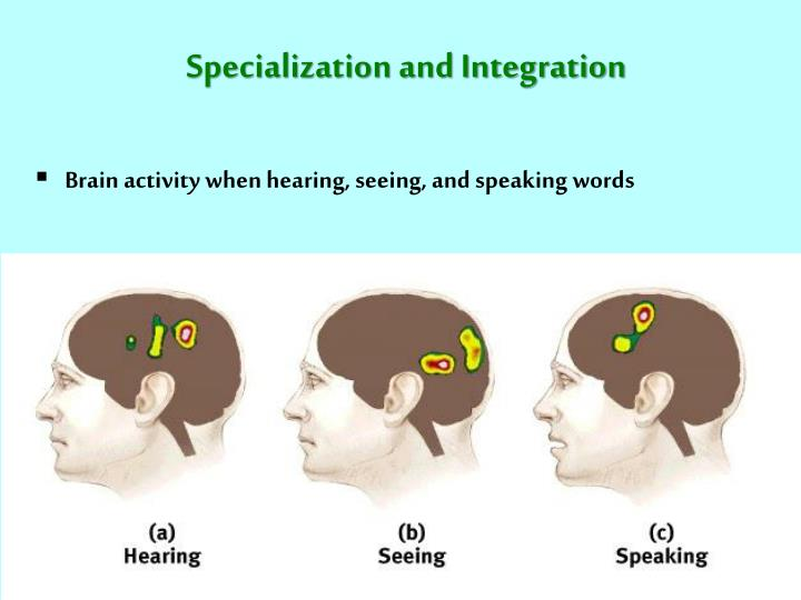 Specialization and Integration