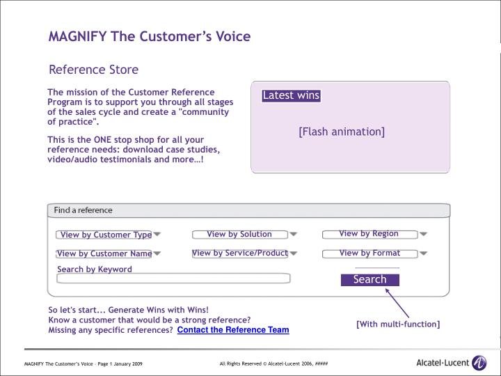 magnify the customer s voice n.