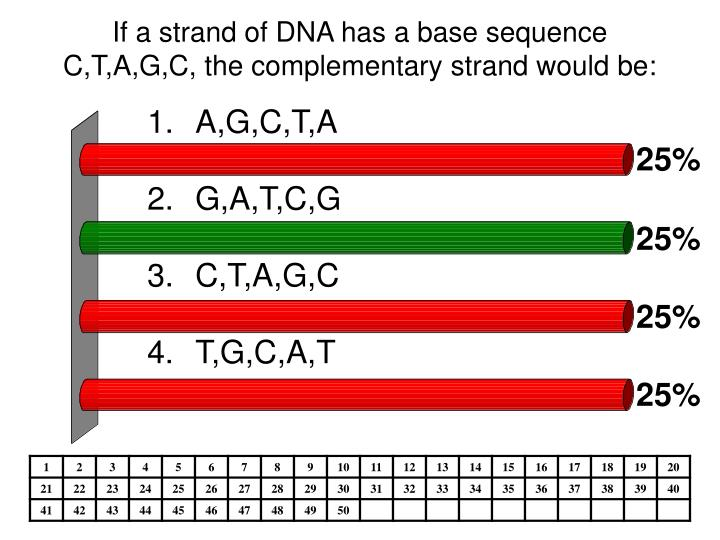 If a strand of dna has a base sequence c t a g c the complementary strand would be