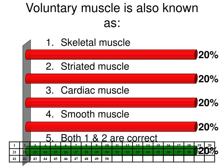 Voluntary muscle is also known as: