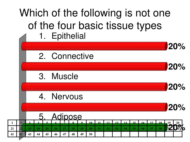 Which of the following is not one of the four basic tissue types