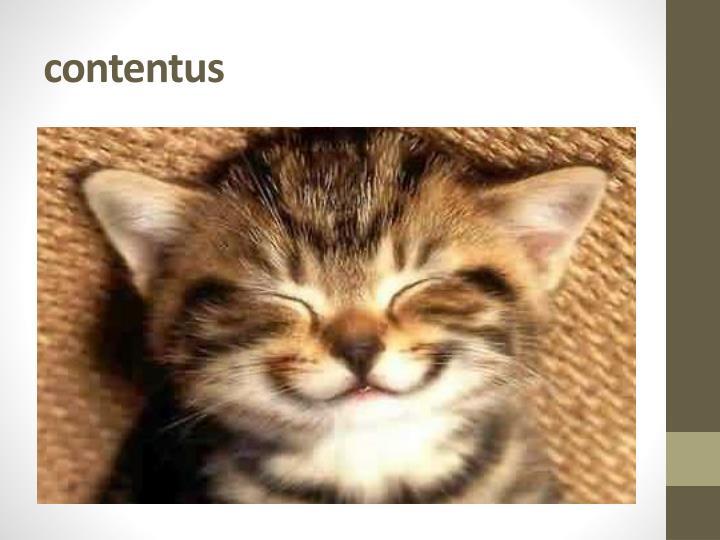 contentus
