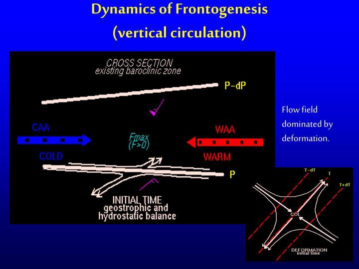 Dynamics of Frontogenesis