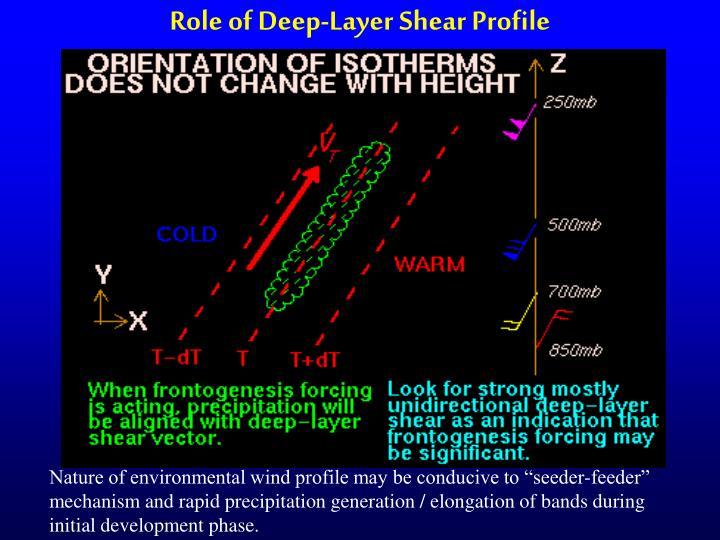 Role of Deep-Layer Shear Profile