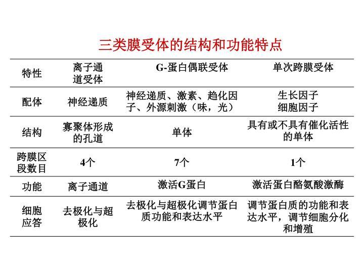 三类膜受体的结构和功能特点